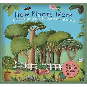 How Plants Work by Christiane Dorion & Beverley Young