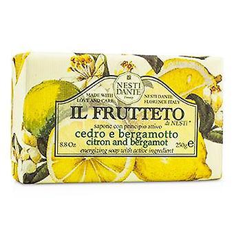 Nesti Dante Il Frutteto Energizing Soap - Citron & Bergamot - 250g/8.8oz
