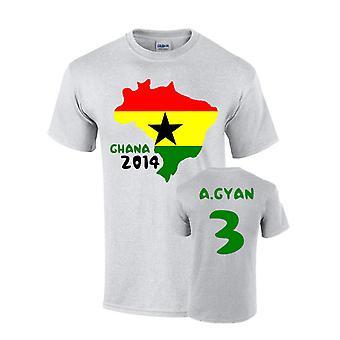 Ghana 2014 land flagg T-shirt (a.gyan 3)