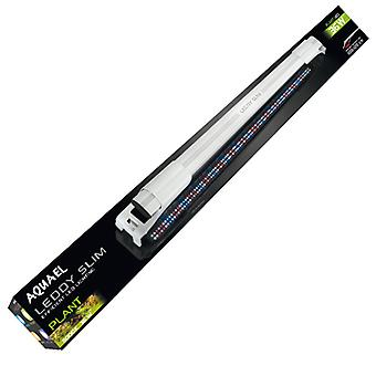 Aquael Pantalla Leddy Slim Plant 8000 K 5 W (Fish , Lighting , LED)