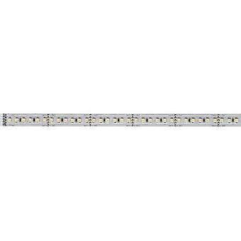 Paulmann LED strip extension + plug 24 V 100 cm Warm white MaxLED 1000 70568