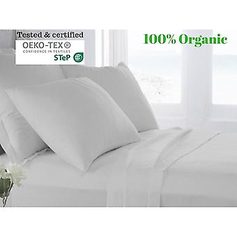 100% Egyptian Cotton Bed Sheet Set (500tc)-silver