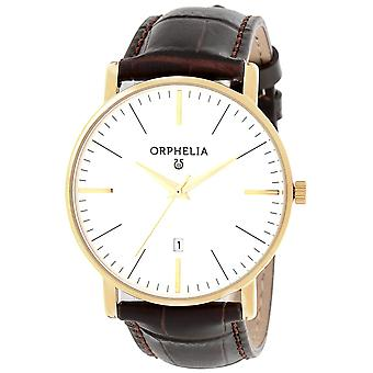 ORPHELIA analogico Mens Watch semplicità in pelle marrone OR61503