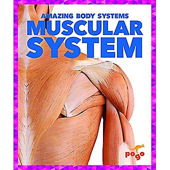Muscular System (Amazing Body Systems)