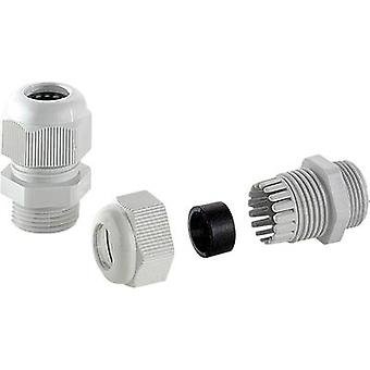 TRU COMPONENTS BFO 29 Cable gland halogen-free PG29 Grey-white (RAL 7035) 1 pc(s)