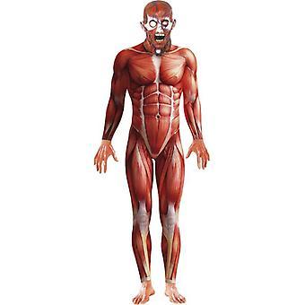 Anatomi Man drakt, brystet 42