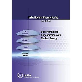 Opportunities for Cogeneration with Nuclear Energy