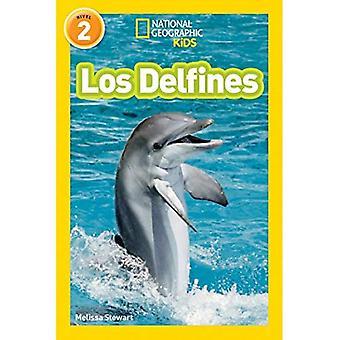 Nationale geografische lezers: Los Delfines (dolfijnen)
