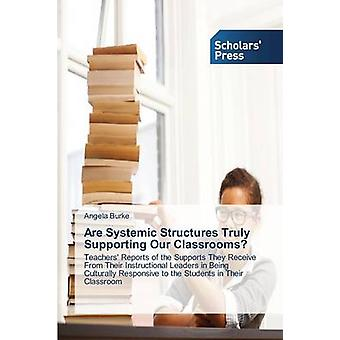 Are Systemic Structures Truly Supporting Our Classrooms by Burke Angela