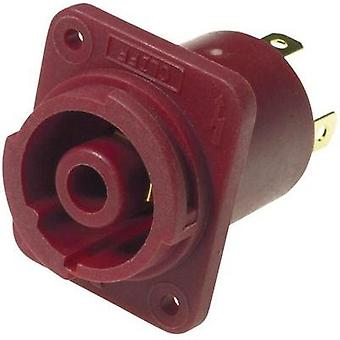 Mains connector Socket, vertical vertical Total number of pins: 4 20 A Red Cliff FCR2069 1 pc(s)