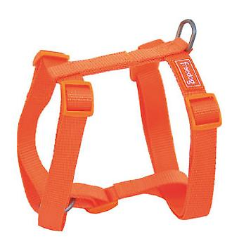 Freedog Tuigje Nylon Basic Orange (honden halsbanden, Leads en harnassen, harnassen)