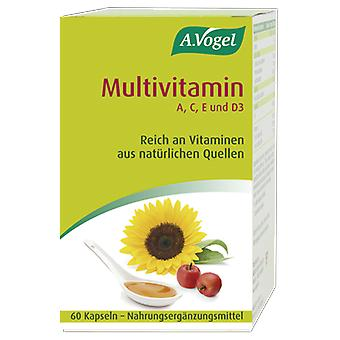 A.Vogel 60 Perle Polioleaceas (Vitamine e supplementi , Vitamine , Nutrienti)