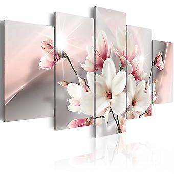 Canvas Print - Magnolia in bloom