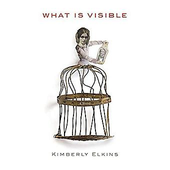 What is Visible: A Novel