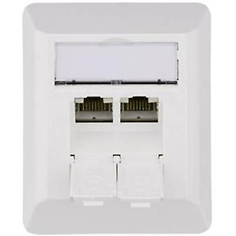 Telegärtner Network outlet Surface-mount CAT 6A 2 ports Alpine white