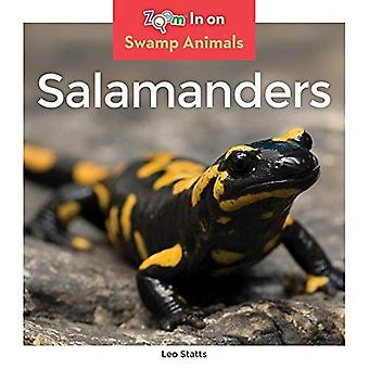 Salamanders (Swamp Animals)