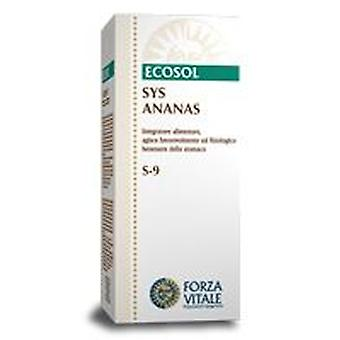 Forza Vitale Sys.ananas (Pineapple) 50Ml.