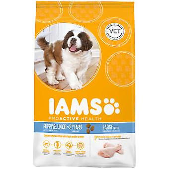 IAMS Puppy and Junior Pro Active Large Breed Rich Chicken (Dogs , Dog Food , Dry Food)