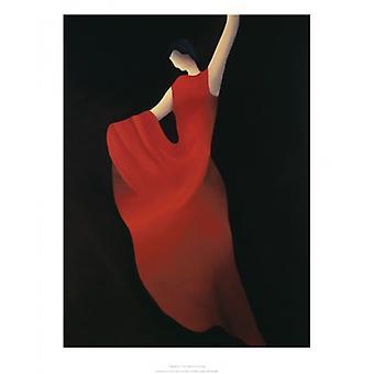 Flamenco Poster Print by Patrick Ciranna (16 x 20)