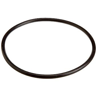 Pentair U9-229 Lid O-Ring for Trap Cover U9229