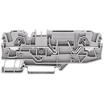 WAGO 2002-1681 Fuse terminal 5.20 mm Pull spring Configuration: L Grey 1 pc(s)