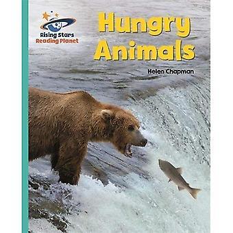 Lezing planeet - hongerige dieren - Turquoise: Galaxy (Rising Stars planeet lezen)