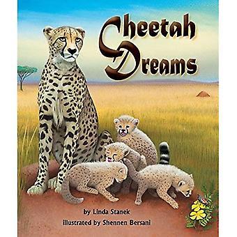Sue o Con Chitas (Cheetah Dreams)
