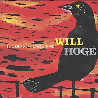 Will Hoge - Blackbird on a Lonely Wire [CD] USA import