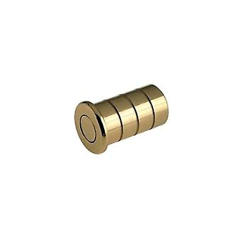 Zoo Dust Socket For Flush Bolts - Concrete - Polished Brass - FB14