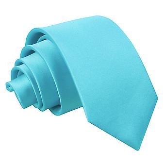 Robin's Egg blauw platte satijnen regelmatige stropdas voor jongens