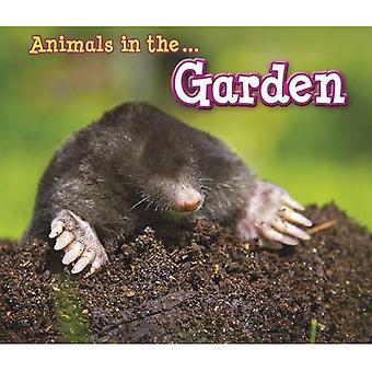 Eläinten puutarhassa (eläinten näen)