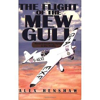 El vuelo de la gaviota Mew