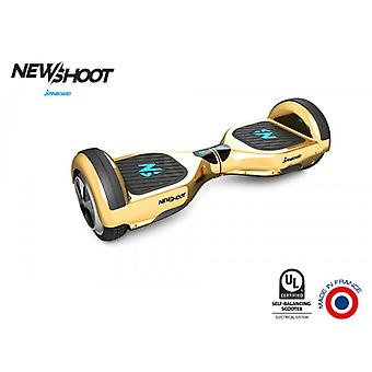 hoverboard spinboard © classic gold chrome