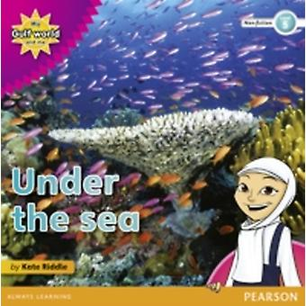 My Gulf World and Me Level 5 nonfiction reader Under the sea by Kate Riddle