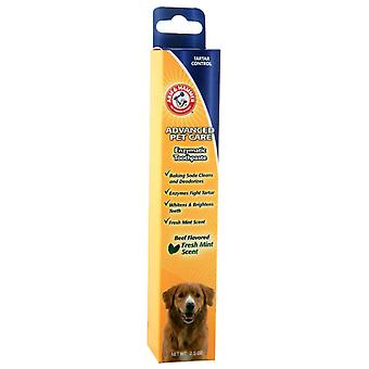 Arm And Hammer Tartar Control Toothpaste Beef