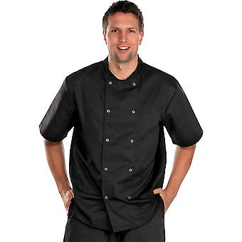 Click Chefs Short Sleeve Jacket - Cccjss