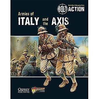 Bout actie: Legers van Italië en de as