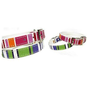 Doggy Things CANVAS COLLAR AZUL (Dogs , Walking Accessories , Collars)
