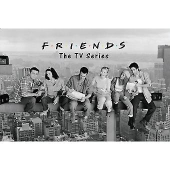Friends - On a Skyscraper Poster Poster Print