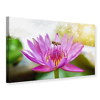 Canvas Print Lotus met Bee