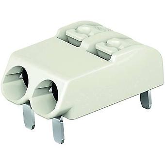 WAGO Spring-loaded terminal 0.75 mm² Number of pins 2 Light grey 1 pc(s)