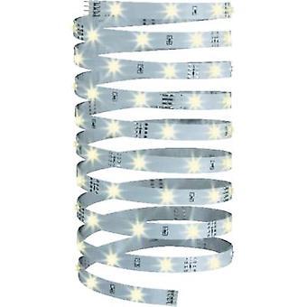 Tira de LED de Paulmann + enchufe 12 V 500 cm cálido blanco YourLED Eco 70255