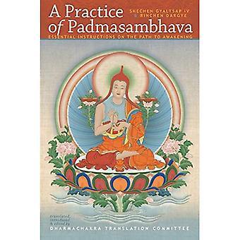 A Practice of Padmasambhava: Essential Intructions on the Path to Awakening