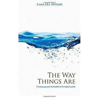 The Way Things Are: A Living Approach to Buddhism (Buddhism (O Books))