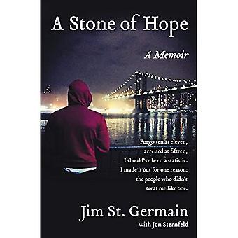 Una piedra de esperanza: mi viaje desde las calles al sistema y la parte posterior