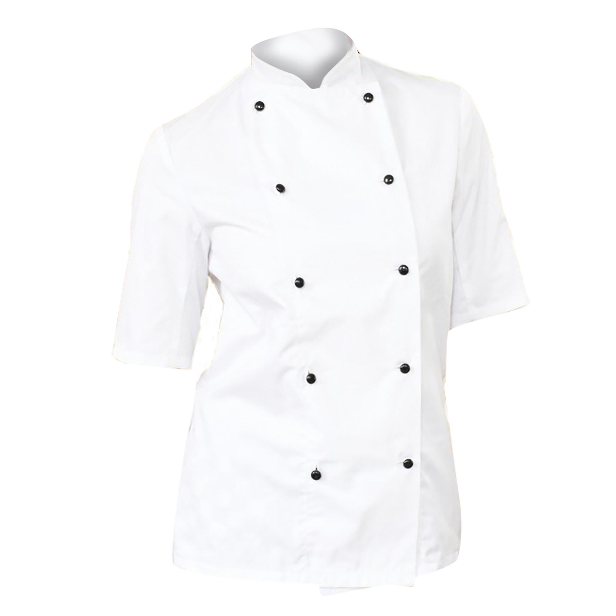 Dennys Womens/Ladies Lightweight Short Sleeve Chefs Jacket / Chefswear (Pack of 2)