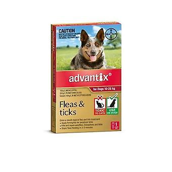 Advantix Red 1 Pack Large Dogs 10-25kg