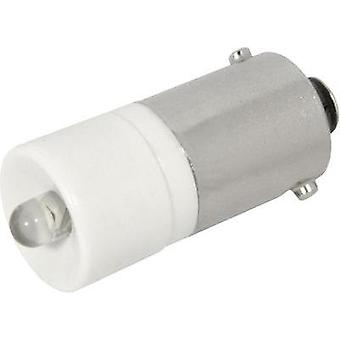 LED bulb BA9s Warm white 24 Vdc, 24 Vac 1350 mcd CML