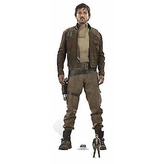 Kapten Cassianus Andor Rogue One: En Star Wars Story Lifesize kartong utklipp