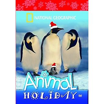 National Geographic: Importare animali USA Holiday Special [DVD]